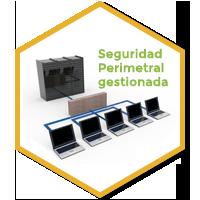 Seguridad perimetral gestionada